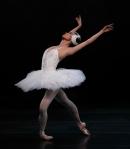 Ballet1-crop