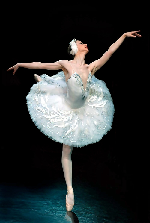 El Lago de los Cisnes: Imagenes de Ballet / Swan Lake