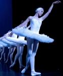 swan-lake-ballet