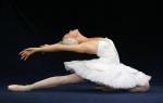 swan-lake-ballet-